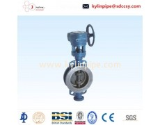 D373H-6-10-10-16-25C hard seal butterfly valve