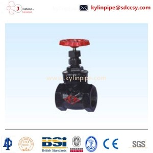 Z45T-10/16 dark bar flange gate valve