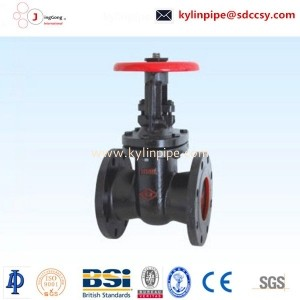 Z44T-10/16 parallel double gate valve
