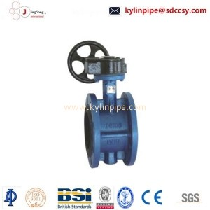 D341X-10/16The worm wheel flange butterfly valve